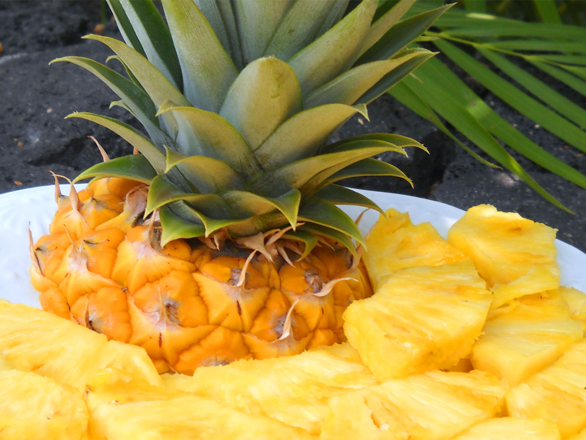 Ananas d'estate