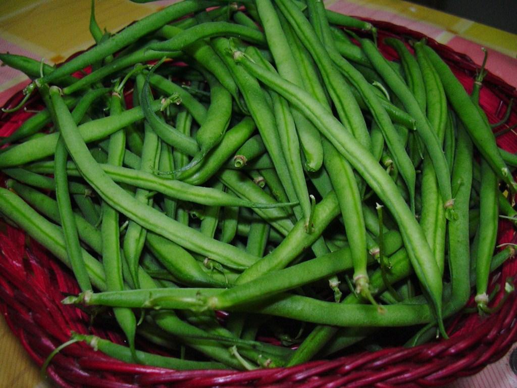 Ricette con fagiolini verdi - Cucinare i fagiolini ...