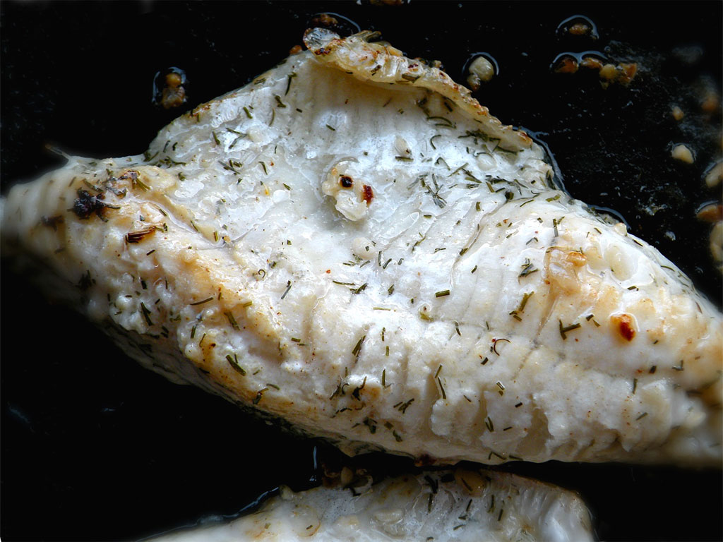 Ricette con pesce persico - Cucinare pesce persico ...