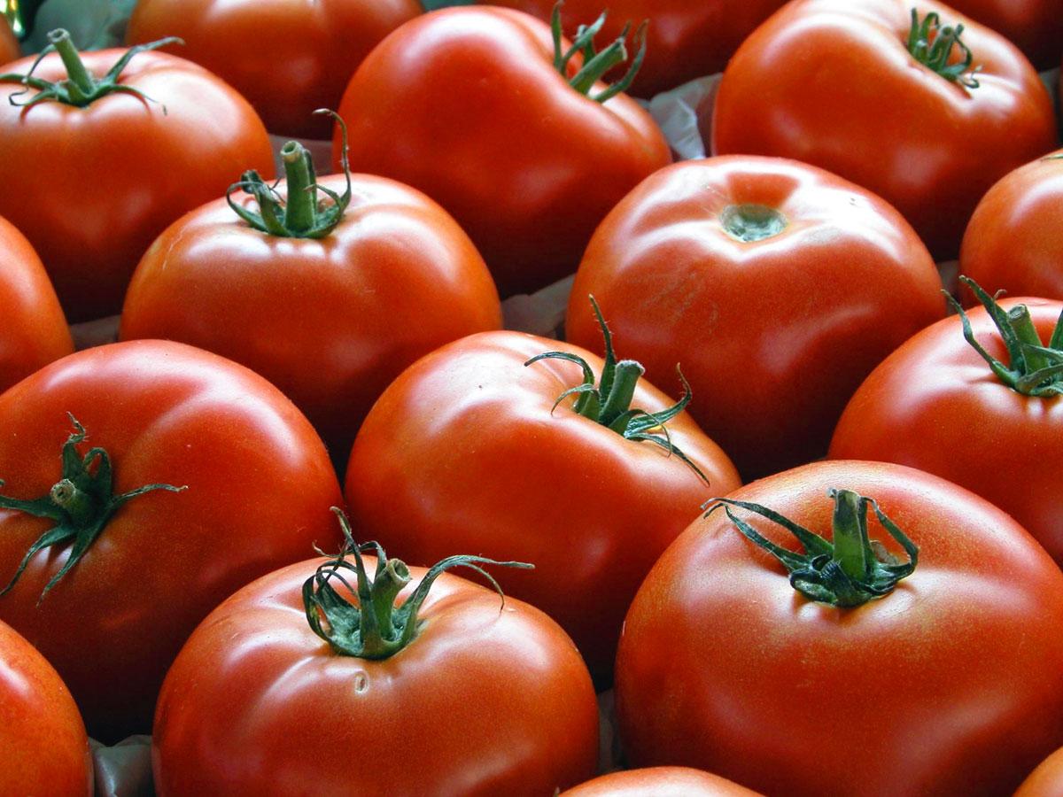 Peperoni e pomodori in padella